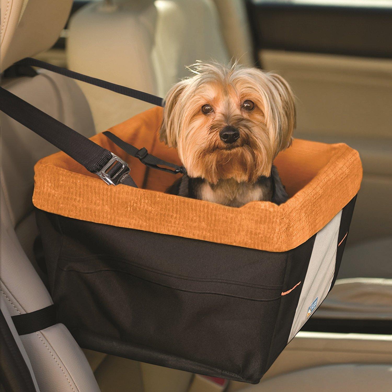 caixa de transporte segurança para cachorros